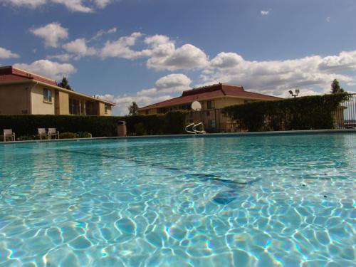 Recreation Center Pool